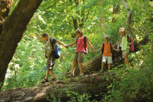 Kinder spielen im Wald